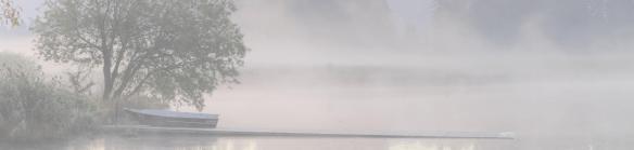 Boat fog