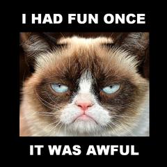 Grumpy-CatSmall